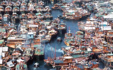 南區漁業歷史之旅