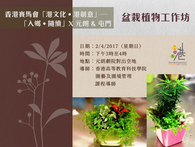 盆栽植物工作坊