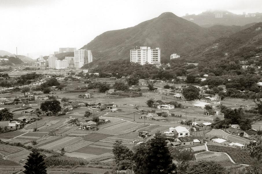 1970年代黃竹坑的農田