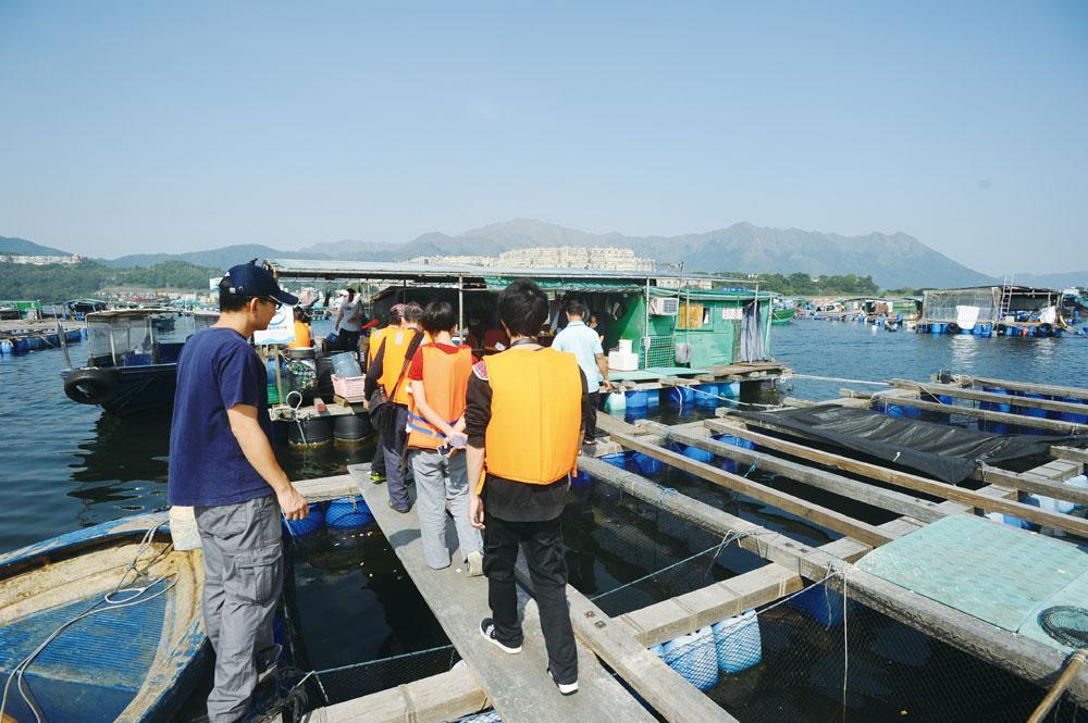 三門仔有不少村民經營魚排,閒時會開放給「三門仔導賞團」的遊人參觀。