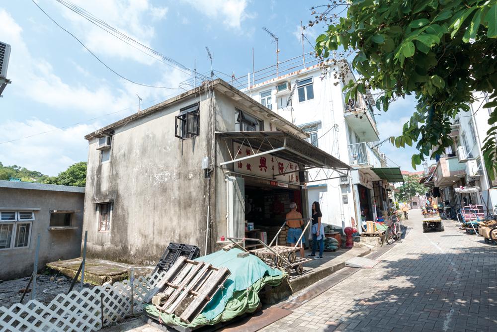四周建有新村屋。對比阮興的舊屋,相映成趣。