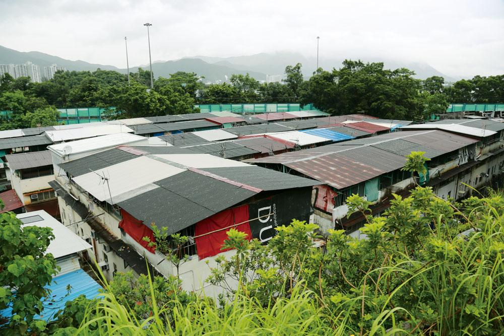 美援新村的房子有兩層高,上面蓋有各色頂棚,一家連著一家,蔚為奇觀。